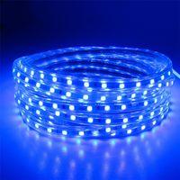 AC220V 5M LED Strip SMD5050 White/Warm White Flexible LED Light waterproof LED ribbon for Garden Kit thumbnail image