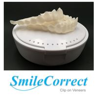 dental press on veneers from China dental lab