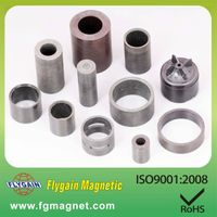 permanent injection bonded magnet