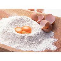 Egg white powder / food additives
