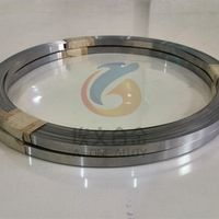 Elgiloy non-magnetic Cobalt-Chromium-Nickel-Molybdenum alloy