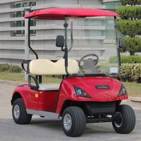 Customer favorite 2 seat electric buggy for golf