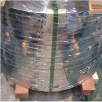 Stainless Steel Strip (from Mill)