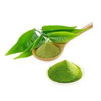 High quality Matcha Green Tea extract thumbnail image