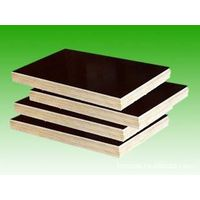 Plywood for Construciton