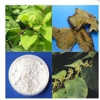 Grape Skin Extract trans resveratrol Polyphenols polygonum cuspidatum extract