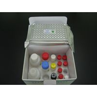 Chloramphenicol ELISA Test Kit for antibiotic residue thumbnail image