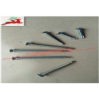 Flat head galvanized drill tail nails various models