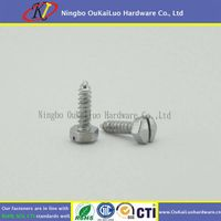 Slotted Hex Washer Head Sheet Metal Screw