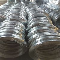 Q-195 HDG 1.2-2.0mm Steel Wire From China Factory thumbnail image