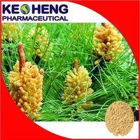 Cell wall broken pine pollen powder(250mesh)/pure natural pine pollen(80mesh) thumbnail image