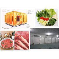 Cold storage freezer chiliing chiller refrigerator for vegetables
