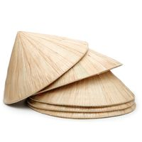 Vietnam conical leaf hat