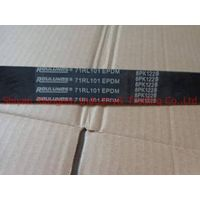 hot sale China supplier for 5010477838 belt