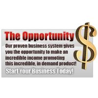 The Opportunity is Now (Make the money!)