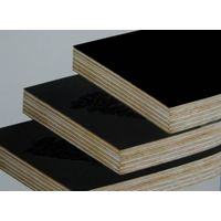 Best Price Construction Plywood Film Faced Plywood