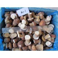 IQF/Frozen Boletus Edulis  whole or cubes