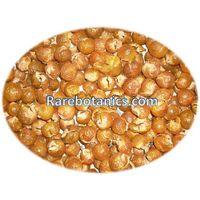 Soapnuts shells