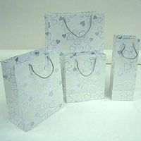 Elegant Paper Shopping Bags Sets Supplier