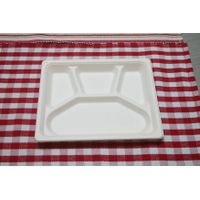 biodegradable tray thumbnail image