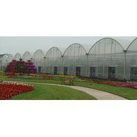 The Multi-Span Greenhouse thumbnail image