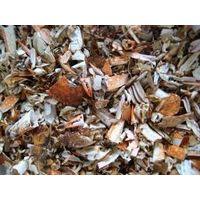 Dried Crab Shell