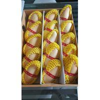 Yellow Mango / Namdokmai Srithong Mango