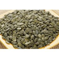 2015 pumpkin seeds kernels GWS AA, AAA