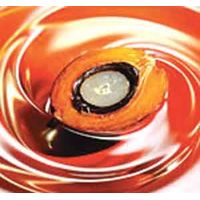 Refined Palm Olein Oil thumbnail image