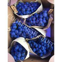 Fresh Black Seedless Grape