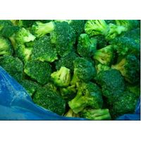 hot selling frozen broccoli, shandong frozen broccoli, IQF frozen broccoli thumbnail image