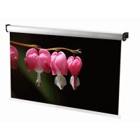 Rear (Dual Viewer) Auto. Roll Projection Screen thumbnail image