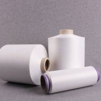 Nylon 6 DTY SD 70/24/2 for Hand Knitting,Weaving