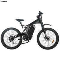Electric Bike TDE17