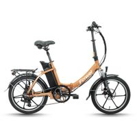 Folding electric bike(FR-TDN02Z-3)