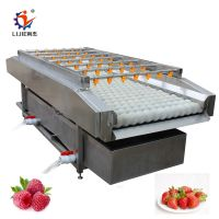 stainless steel cherry cleaning machine with factory price
