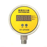 Digital Pressure Gauge XY-PG300E thumbnail image