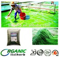 2015 sprilina season low price  organic Spirulina / Spirulina powder /spirulina table
