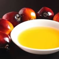 Pure Red Palm Oil Food Grade