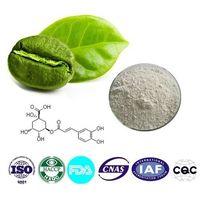 Chlorogenic acid  Cas number:327-97-9 98% HPLC 1kg / bag thumbnail image