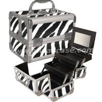 Beauty Box Make Up Box