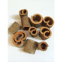 Cinnamon Round Cut (Kakaotlk/whatsapp/viber/skype Mr. Tuyen 0084986592268 00916275888)