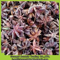 100% natural Guangxi star aniseed without stem