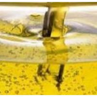 Purchase rapeseed oil thumbnail image