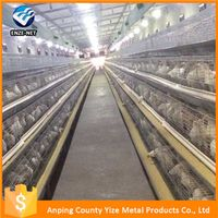 h type layer chicken house design for chicken cage