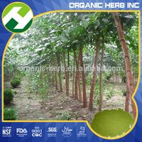 Moringa Extract Products Moringa Powder Manufacturer