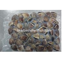 FROZEN COOKED WHOLE BROWN CLAM SHELL ON