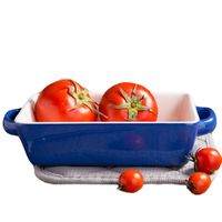 Blue Rectangular Baking Dish