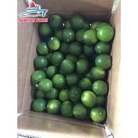 High Quality Fresh Seedless Lime (00 84 167 975 6513) thumbnail image