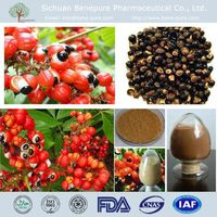 Food grade natural Guarana Exract Paullina Cupana Maues-Sateres with 10% 20% 10:1,BENEPURE